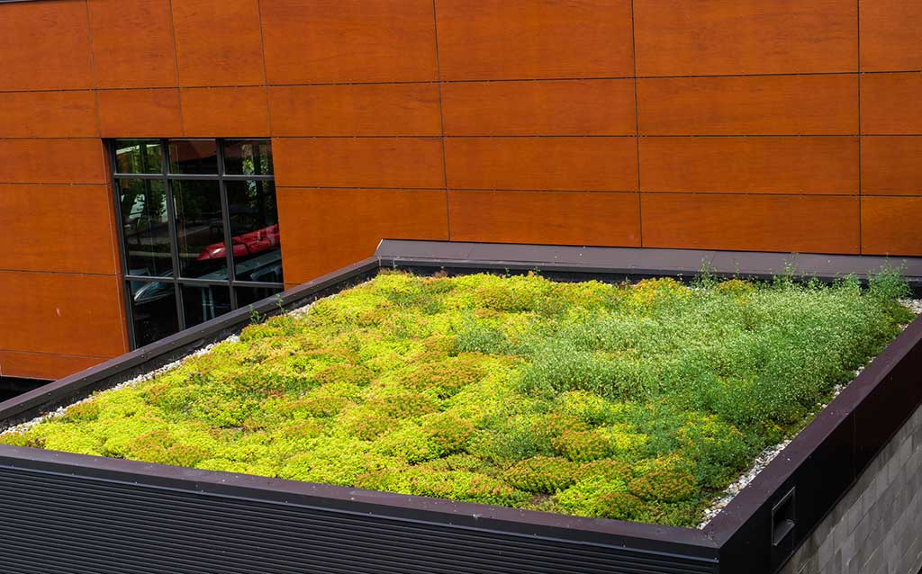 green or living roof with vegetation growing to insulate